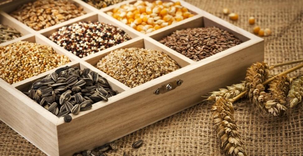 Хранение посевных семян