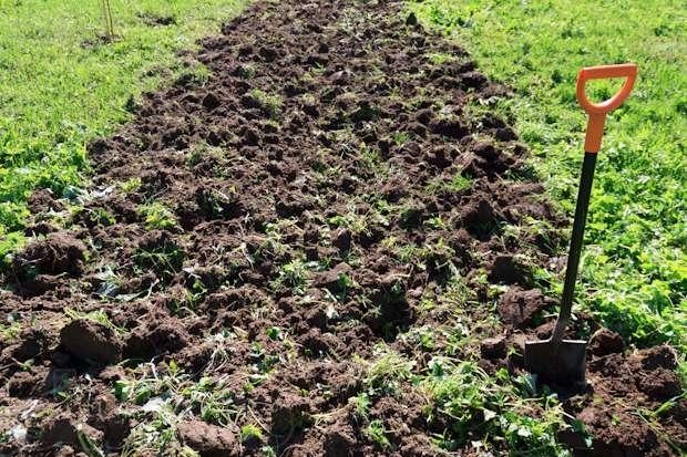Перекопать огород