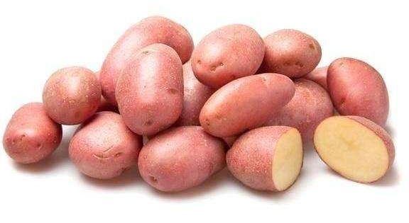 протравители для картошки